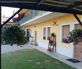 Sunny's House