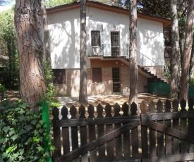 Apartment in Eraclea Mare 25715